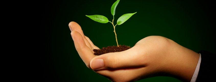 reciclaje-medio-ambiente